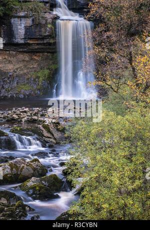 Thornton Kraft Wasserfall, Teil der Ingleton Waterfall Trail, Herbst, Yorkshire Dales National Park, North Yorkshire, England, Großbritannien - Stockfoto