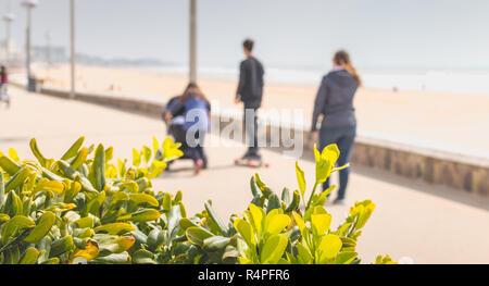 Familie, Spaziergänge am Meer im Frühling - Stockfoto