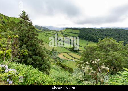 Weideland bis zur Caldeira Do Alferes auf der Insel Sao Miguel auf den Azoren. - Stockfoto