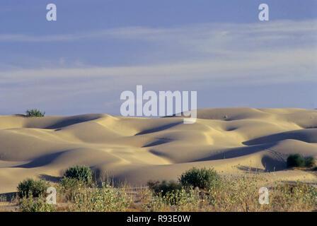 Sand, Dünen, Khuri, Jaisalmer, Rajasthan, Indien - Stockfoto