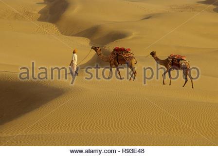 Man Walking mit Kamelen in Sand, Dünen, Wüste Khuri, Jaisalmer, Rajasthan, Indien - Stockfoto