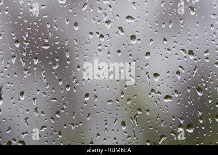 Regentropfen auf dem Fenster, verschwommene Silhouetten der Baum im Hintergrund - Stockfoto