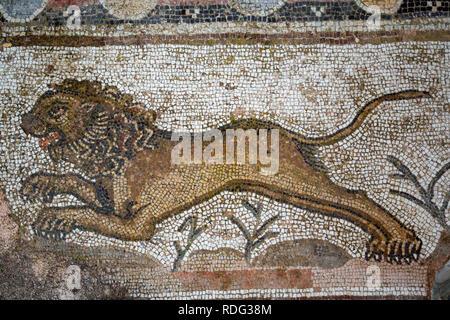 Antike Mosaik der Löwe im archäologischen Park Paphos, Zypern - Stockfoto