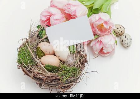 Frühling Grusskarten mockup. Rosa Tulpe Blumen Blumenstrauß, Ostereier im Nest und Grußkarte auf einer hölzernen Hintergrund. Post Blog Social Media, Anzeigen - Stockfoto