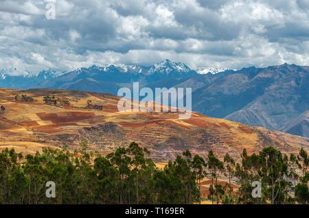 Landwirtschaft Landschaft mit terrassierten Feldern in ländlichen Dörfer im Heiligen Tal der Inka, Cusco Region, Peru. - Stockfoto