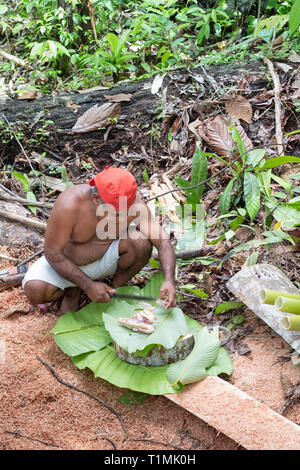 Indigene Nuaulu Alfur Menschen der Gruppe, die ein traditionelles Erde Backofen, Seram Insel, Molukken, Indonesien - Stockfoto