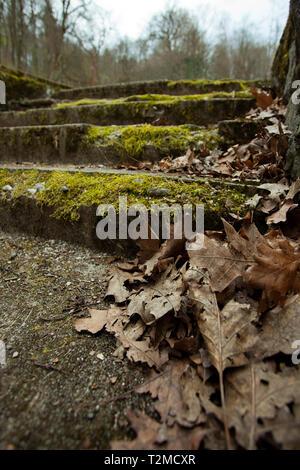 Moos bedeckt Treppen in einem Park - Stockfoto