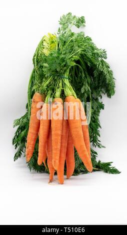 Isolierte Bündel Karotten auf weißem Hintergrund - Stockfoto