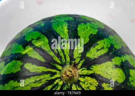 Wassermelone haut Nahaufnahme Textur mit Kopie Raum - Stockfoto