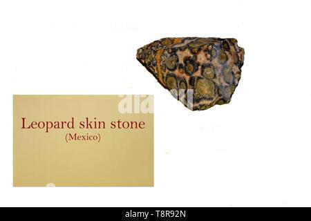 Leopard skin Stein von Mexiko close-up - Stockfoto