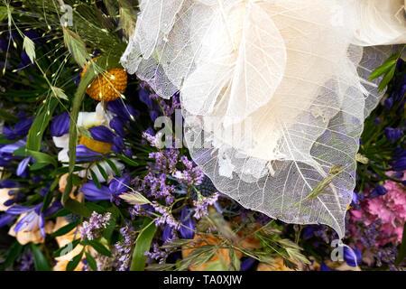 Schöne, zarte Blumen und Blätter einschließlich der Toten Skelett von Blattvenen - Stockfoto