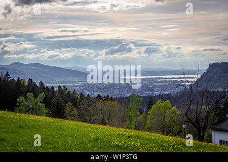 Blick vom Buch zum Bodensee - Stockfoto