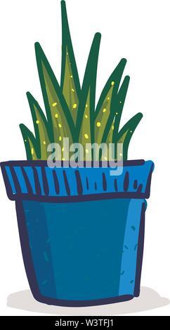 Dunkel grüne Pflanze im blauen Topf, Vector, Farbe, Zeichnung oder Abbildung. - Stockfoto