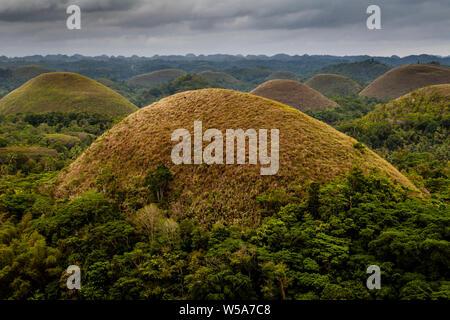 Die Chocolate Hills, Carmen, Bohol, Philippinen - Stockfoto