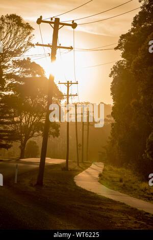 Eine Kombination aus Meer, Nebel und am späten Nachmittag Sommer Sonne schafft eine warme orange Glühen über eine vorstadtstraße und eine Linie der Strom- Polen - Stockfoto