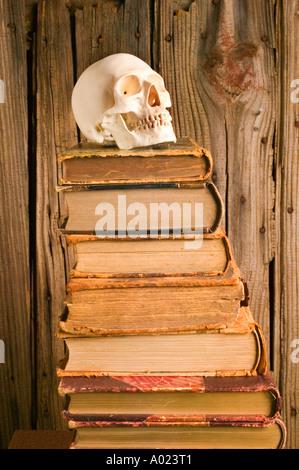 Menschlicher Schädel Modell auf alten Stapel von Büchern - Stockfoto