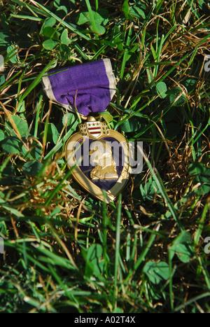 Ein lila Herz liegt in der Wiese während einer Gedenkfeier für Vietnam-Veteranen - Stockfoto