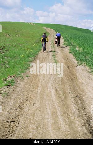 Zwei Mountainbiker auf Feldweg durch Frühling Weizenfelder außerhalb von Siena Toskana Italien - Stockfoto