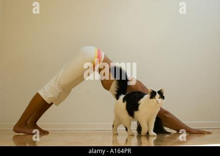 Junge Frau praktizieren Yoga im Innenbereich - Stockfoto