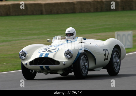 1955 Aston Martin DB3S/112, Urs Müller fahren, beim Goodwood Revival, Sussex, England. - Stockfoto