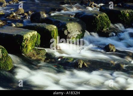 Wasser Rauschen zwischen Trittsteine im Stainforth in Yorkshire Dales - Stockfoto