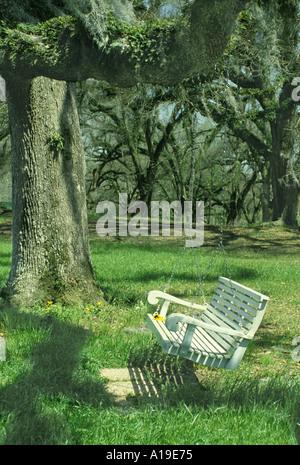 Friedliche Szene: eine weiß lackierte Holz Schaukel hängt von einer riesigen Eiche mit spanischem Moos und Farnen - Stockfoto