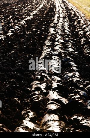 Frisch gepflügten Feld - Stockfoto