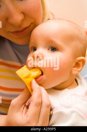 Mango-Degustation für baby - Stockfoto