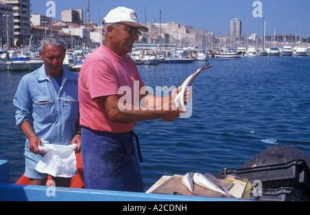 Männer verkaufen frisch gefangenen Fisch auf dem Fischmarkt am Vieux Port in Marseille im Süden Frankreichs - Stockfoto