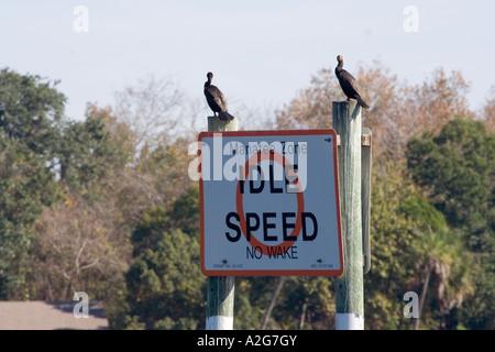 Vögel sitzen auf Boot Zeichen - Stockfoto