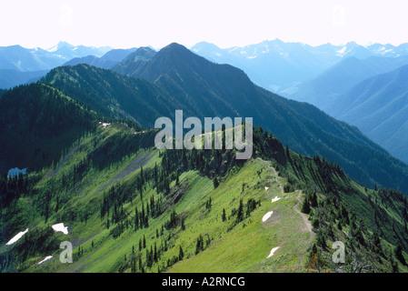 Blick auf den Selkirk Mountains und Nadelwälder aus Idaho Peak in der Kootenay Region British Columbia Kanada - Stockfoto