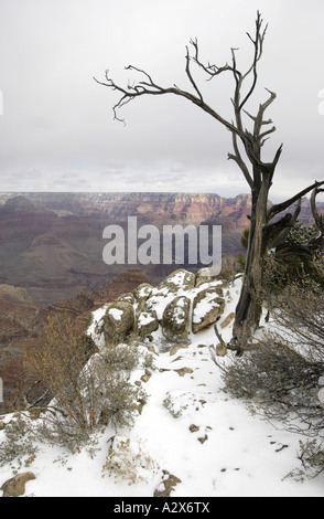 Grand Canyon im Winter vom Mather Point-Grand Canyon Nationalpark Arizona gesehen - Stockfoto