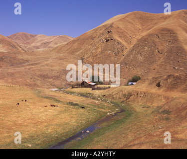 California-Hof und Vieh-ranch - Stockfoto