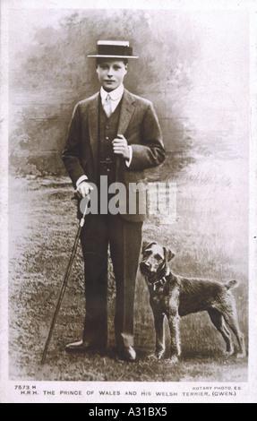 Edward Viii Hund Gwen 10 - Stockfoto
