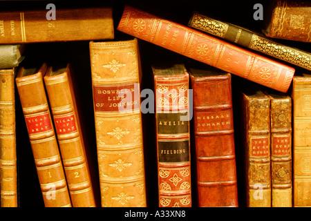 alte Bücher auf einem Regal - Stockfoto