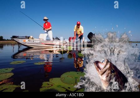Ehepaar im Ruhestand Angeln vom Boot Ansicht des Basses springen aus dem Wasser, als die Frau, die es Rollen - Stockfoto