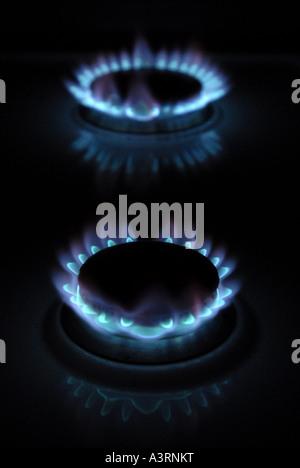 BRENNEN VON HEIMISCHEN GASHERD RINGE MIT BLAUEN FLAMMEN WIEDER STEIGENDEN GAS KOSTEN KOSTEN HEIZKOSTEN HEIZUNG .DE. - Stockfoto