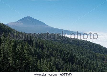 Der Teide (Vulkan) in Teneriffa, Kanarische Inseln, Spanien - Stockfoto