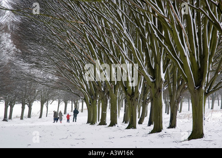 Familienausflug in die Bäume 2-Radley College - Stockfoto