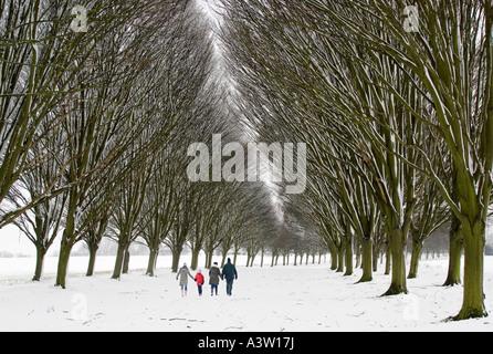 Familie gehen in die Bäume - Radley College - Stockfoto