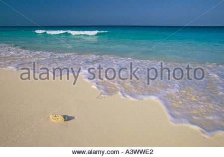 Karibik und Coral sand Strand von Cancun auf der Halbinsel Yucatan-Mexiko - Stockfoto