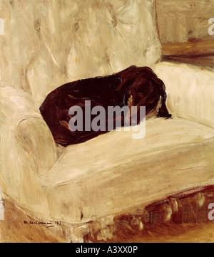 """""""Fine Arts, Liebermann, Max, (1847-1935), Malerei,""""Schlafender Dackel"""", (""""schlafende Dackel""""), 1915, 64 x 72 cm, - Stockfoto"""