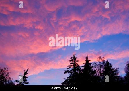 Abend Wolken mit Sonnenuntergang Licht reflektiert, Greater Sudbury, Ontario, Kanada - Stockfoto