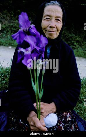 Siebenbürgen Rumänien Seniorin, die Iris Blume 1998 - Stockfoto