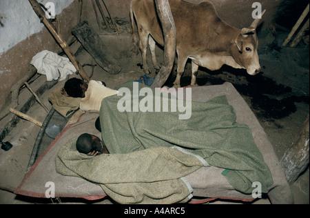 DIE MÄNNCHEN IN DER FAMILIE SCHLAFEN IN EINEM RAUM MIT DEN TIEREN, MESHAL, ERITREA, 1991 - Stockfoto