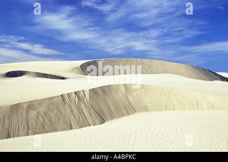 Weiß gefärbt Sanddünen an der Oregon Dunes National Recreation Area in Oregon - Stockfoto