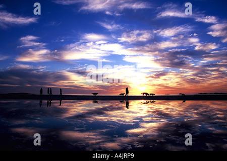 Familien und Hunde genießen Sie einen Sonnenuntergang Spaziergang am Strand mit Reflexionen und einem schönen farbigen, - Stockfoto