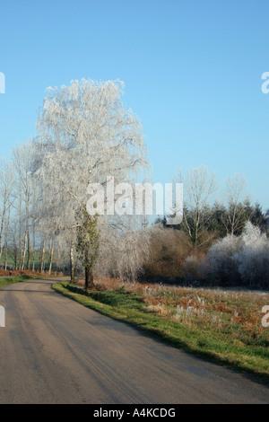 Frostiger Morgen in Frankreich - Stockfoto