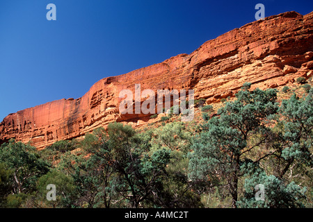 Die steilen Felswände des Kings Canyon im Watarrka National Park, Australien Northern Territories. - Stockfoto