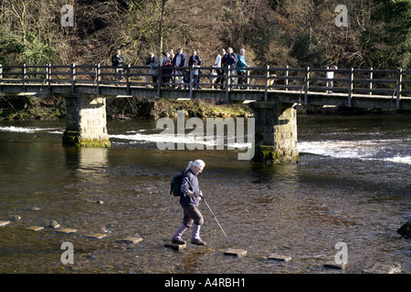 Walker ging das Stepping Stones über Flusses Wharfe Bolton Abbey, Wharfe Dale North Yorkshire England UK. - Stockfoto